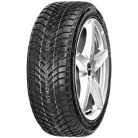 Neolin NeoWinter 225/50R17 98V